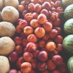 bcfruits
